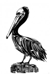 Pelican in Prespes Lake